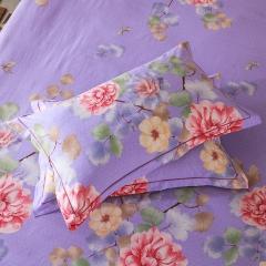 梧桐树- 全棉加厚磨毛单品 (枕套) 48cmX74cm/一对 9花颜绽放 紫