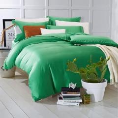 60支 极爽天丝 素色经典款 标准(200*230cm) 拉菲特-翠绿